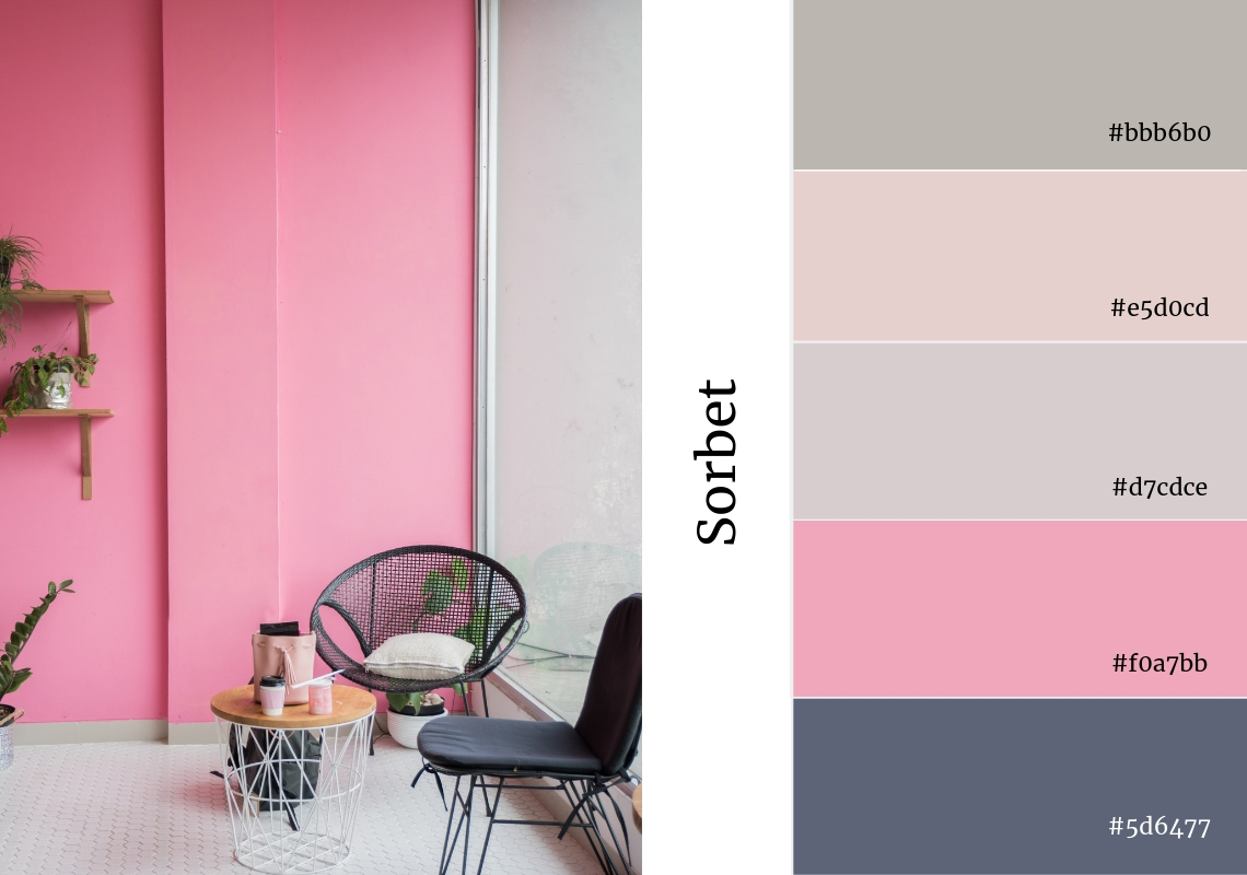website colour scheme inspiration pink sorbet candy sweets