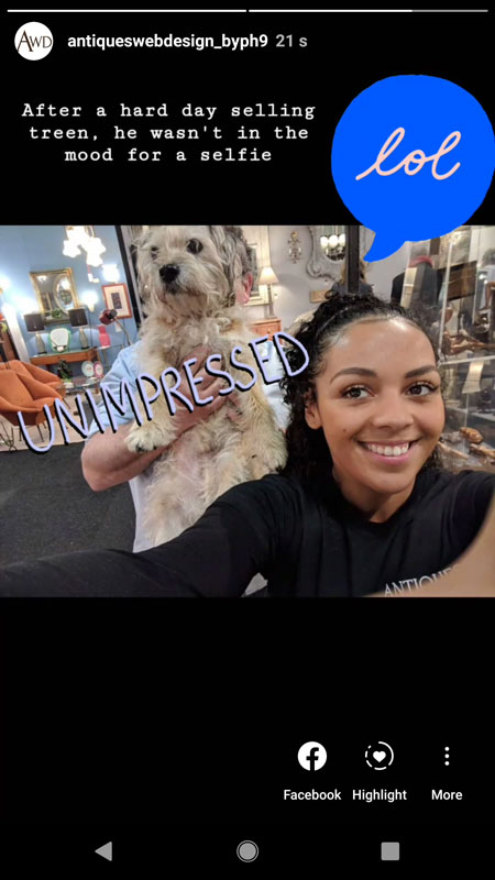 dog selfie Instagram story